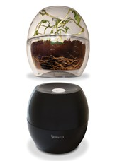 Dark & Clear Grow Bell Set
